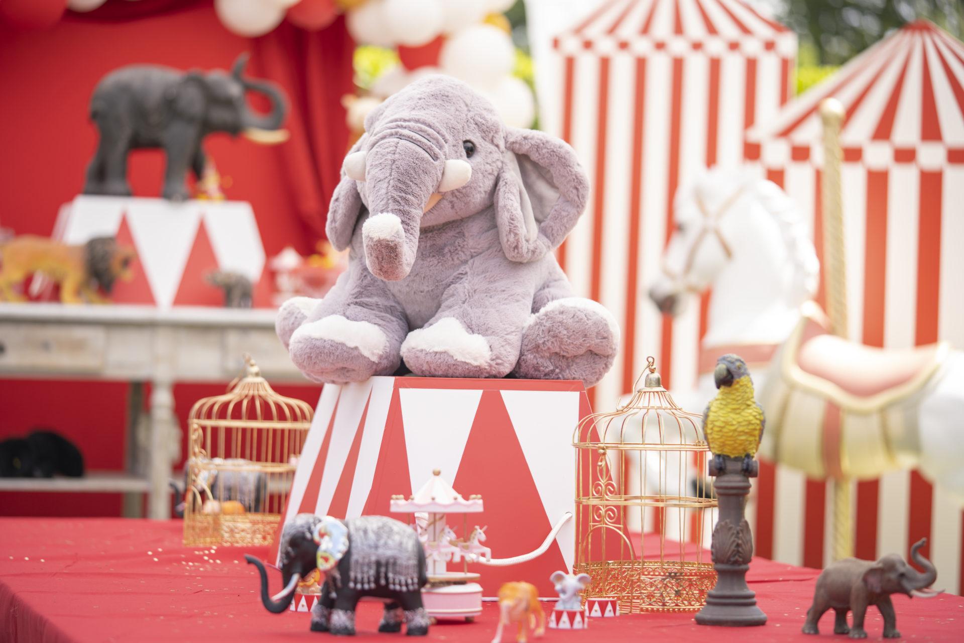 décoration pour anniversaire enfants alpes maritimes